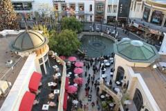 The Los Angeles Grove