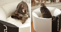New OTI Modern Cat Bed from MyKotty  hauspanther