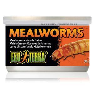 Exo Terra Mealworms 34g