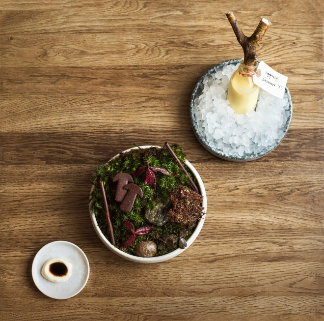 Forest flavours, chocolate and eggnog at Noma. Photo: HdG photography.