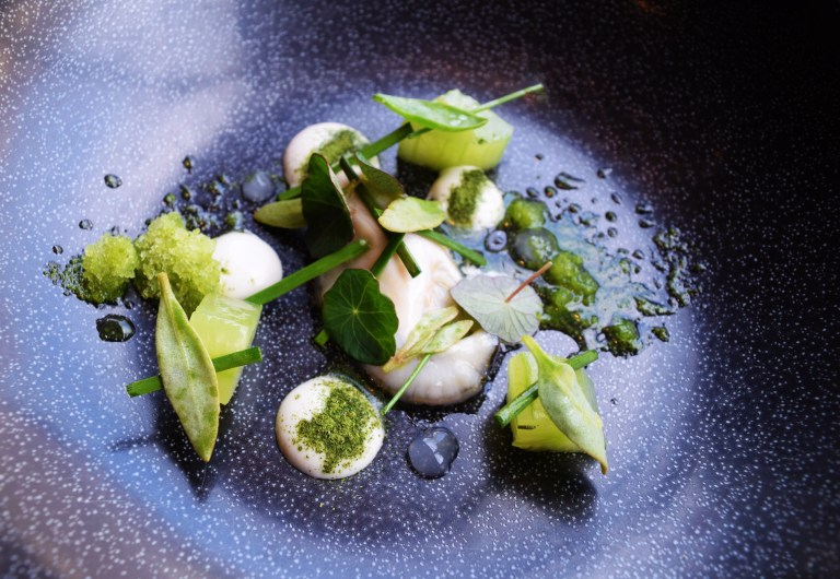Oyster, cucumber, arrow grass. Photo: courtesy of JP McMahon