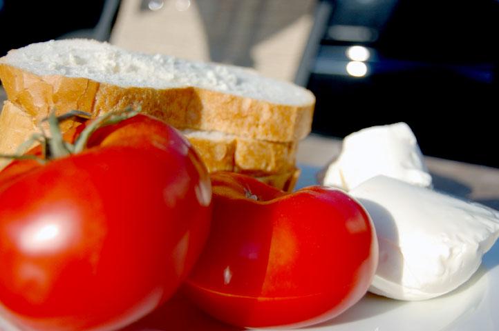 Fresh tomato moz- small
