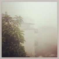 Waking up in the clouds in Sapa