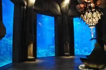 Atlantis Dubai Lost Chambers Aquarium