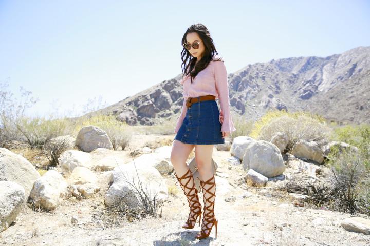 An Dyer Coachella Desert