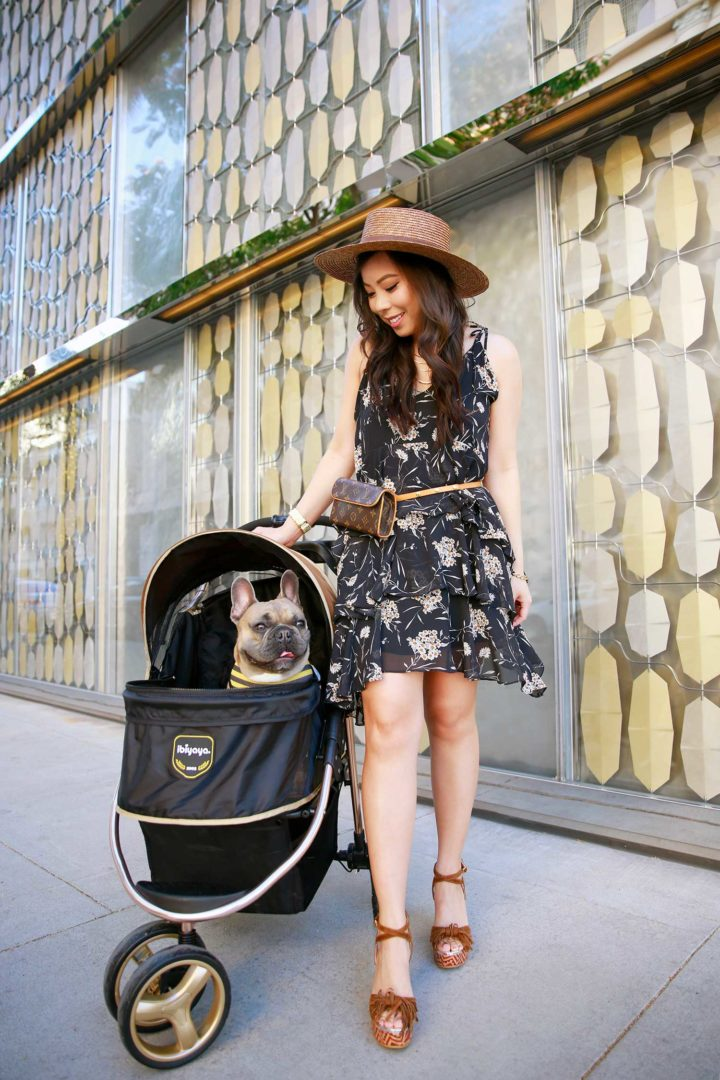 An Dyer wearing Louis Vuitton Belt Bag Fanny Pack with Diesel French Bulldog Ibibaya Luxury Pet Dog Stroller in Beverly Hills