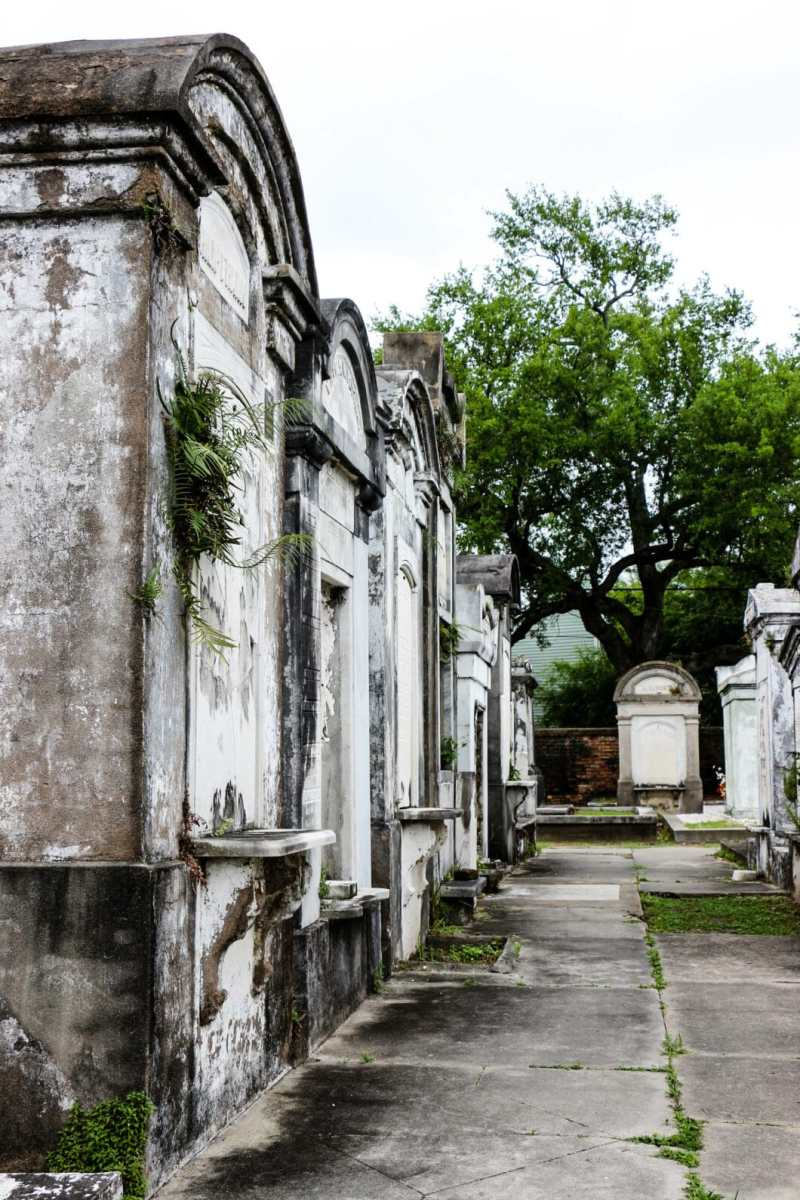10 Quirky Things To Do in New Orleans