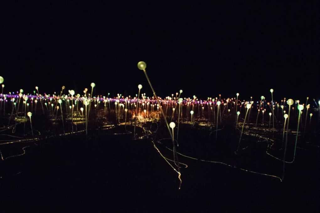 night at a field of light