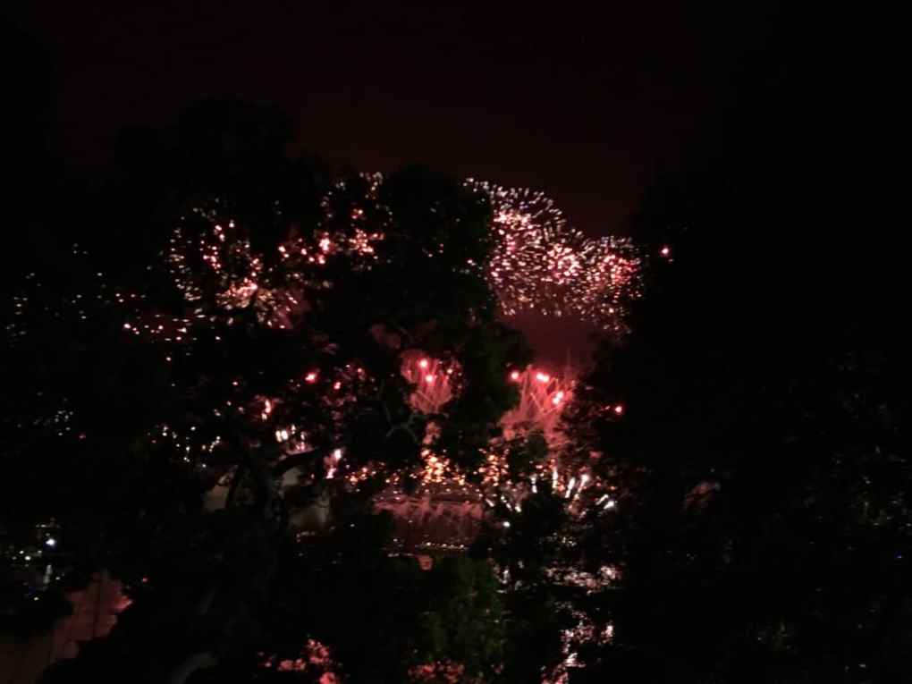 Sydney fireworks from Mrs Macquaries Point.