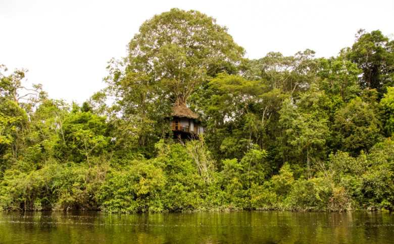 View of treehouse 10 from the river