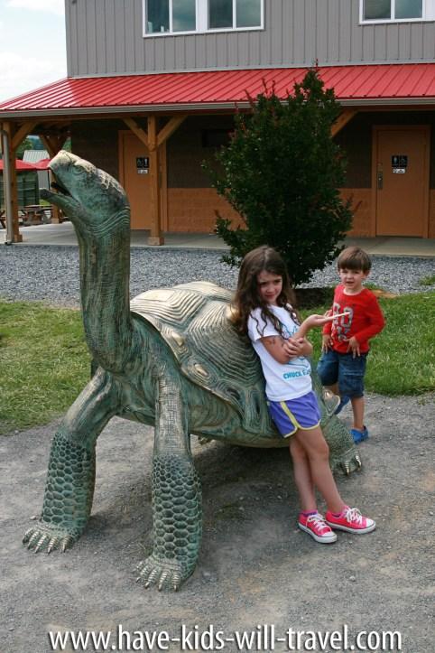 VA Safari Park 12
