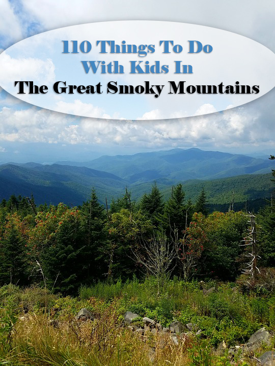 110 Things to Do in The Great Smoky Mountains with Kids