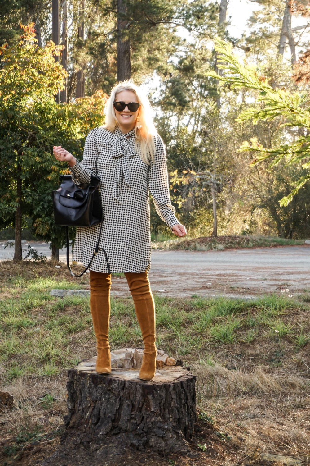 Fall Style in This Houndstooth Dress, Who What Wear Houndstooth Dress, Target Style, Fall Dress Under $30, Have Need Want