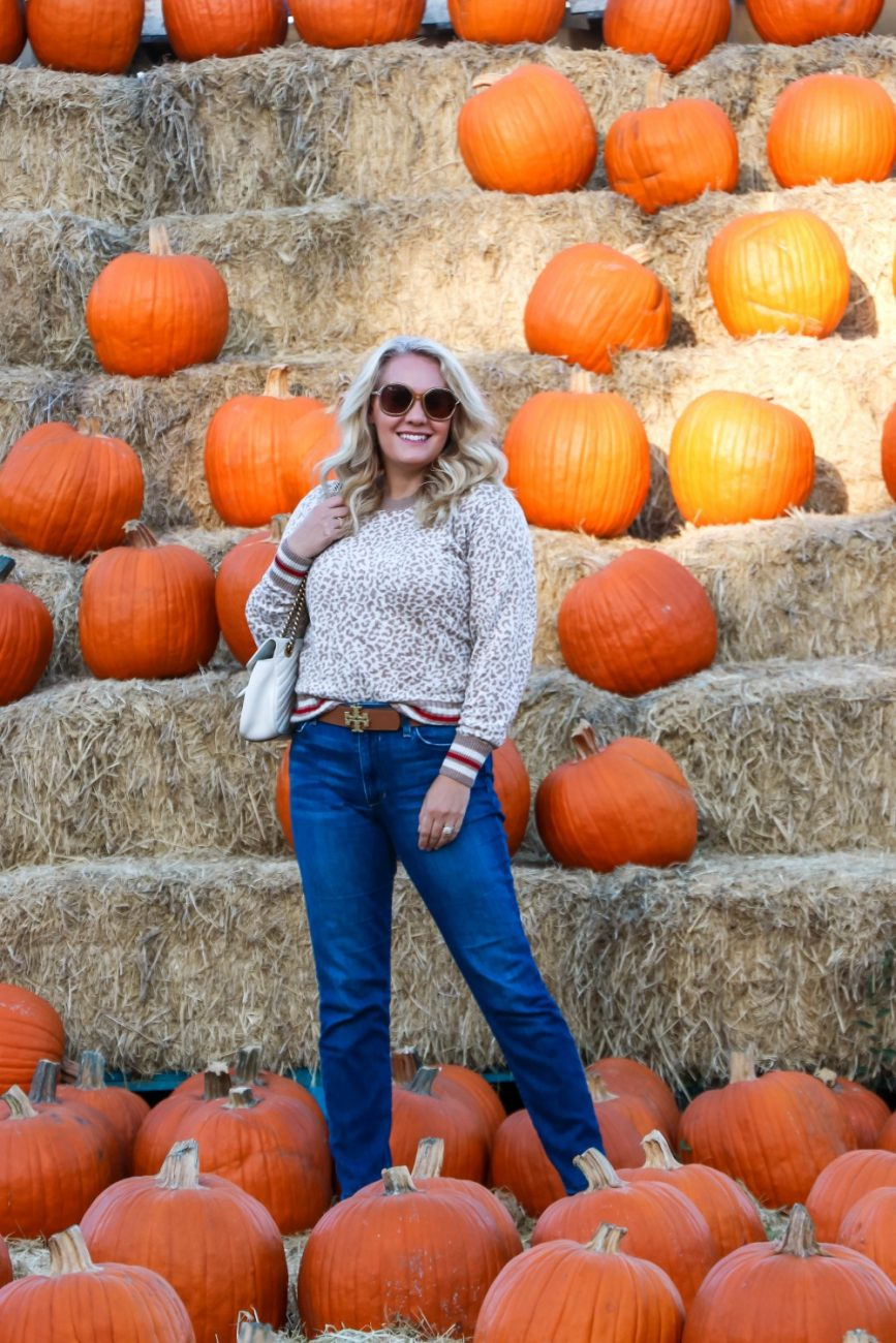 Feeling all the fall vibes in this leopard print sweater. Head on over to the blog to check out the post + get my outfit details and a code for 30% off this on trend animal print sweater! #fallstyle #falloutfit #leopardprintsweater #leopardprint #pumpkinpatch