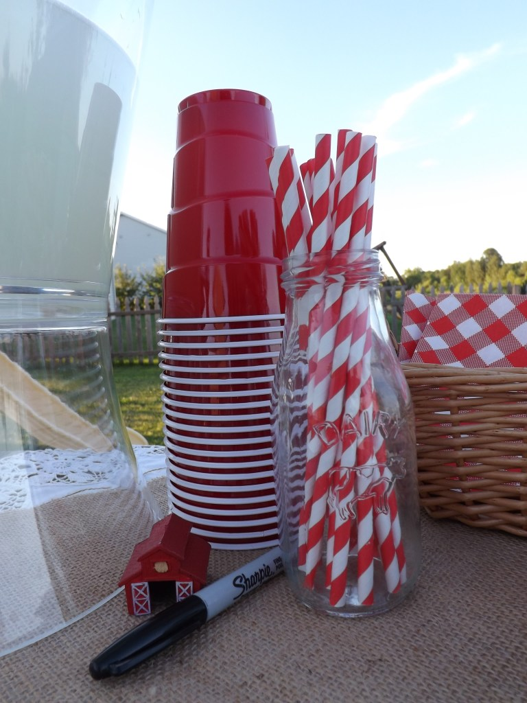 Red Solo Cups & Paper Straws