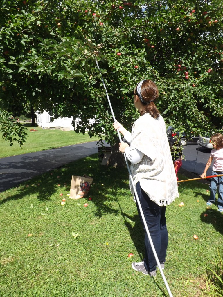 Katie using rake