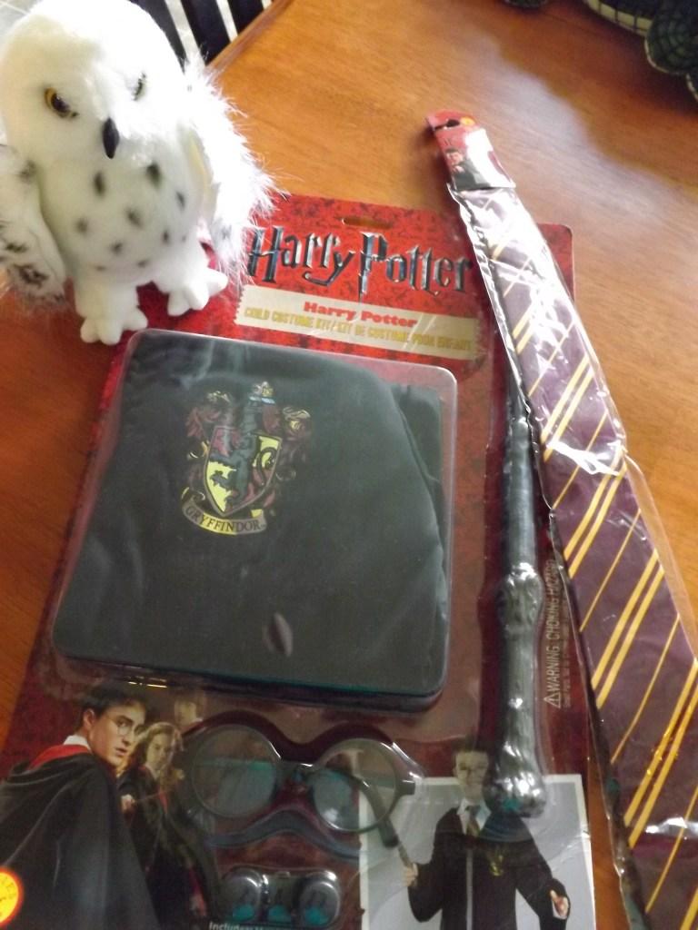 harry-potter-costume