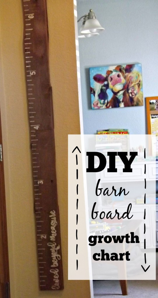 DIY Barn Board Growth Chart
