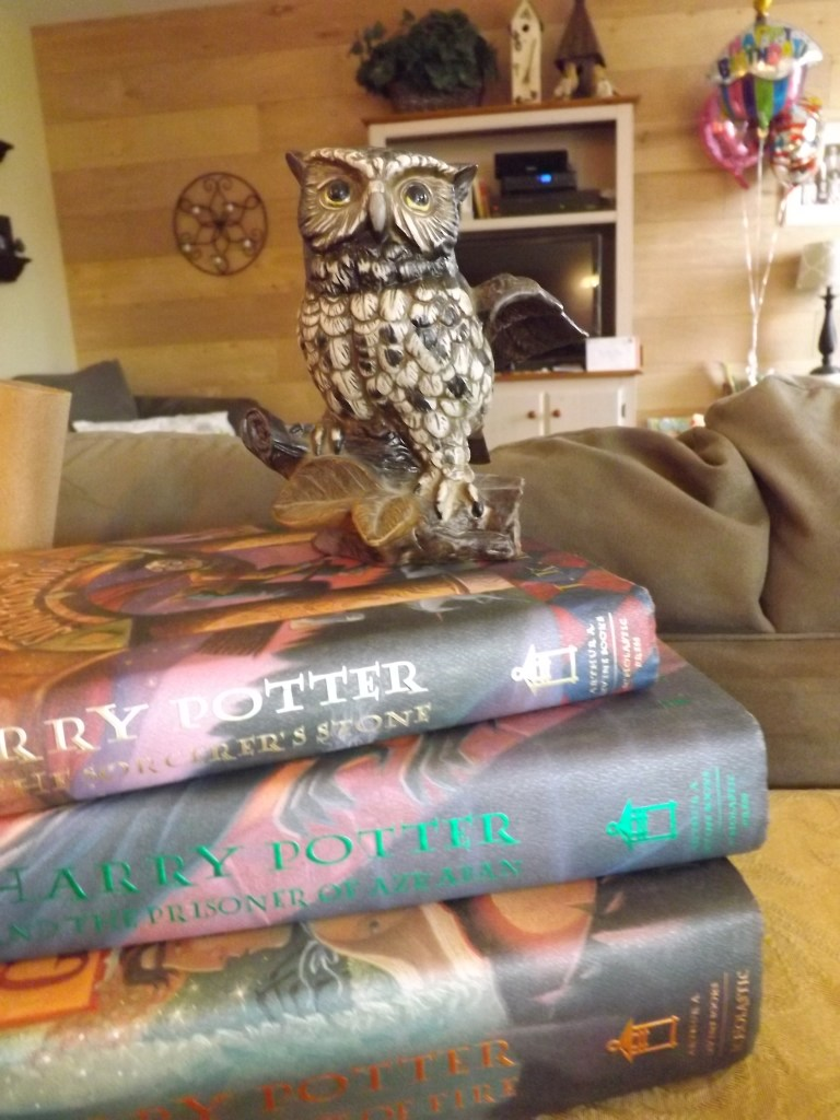 books-and-owl-statue