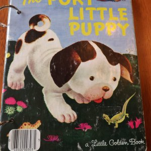 The Poky Little Puppy Upcycled Little Golden Book Journal