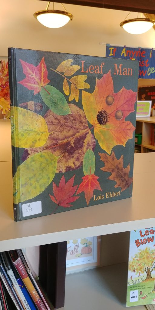 Five Great Children's Books About Fall