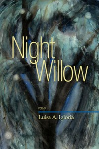 Igloria_Night_Willow
