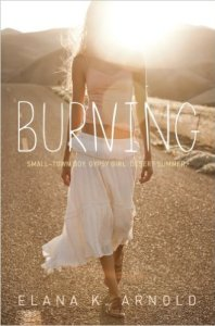 Burning (Delacorte Press, 2013). Fiction. YA/Teen.