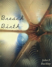 Breach Birth (Alternating Current Press, 2011)