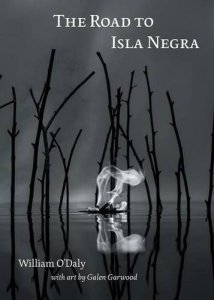 The Road to Isla Negra (Folded Word Press, 2015)