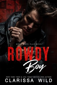 Rowdy Boy by Clarissa Wild