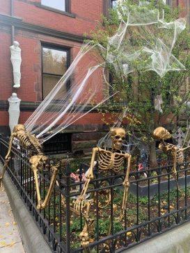 Skeltons in Back Bay