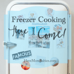Freezer Cooking…Here I come!