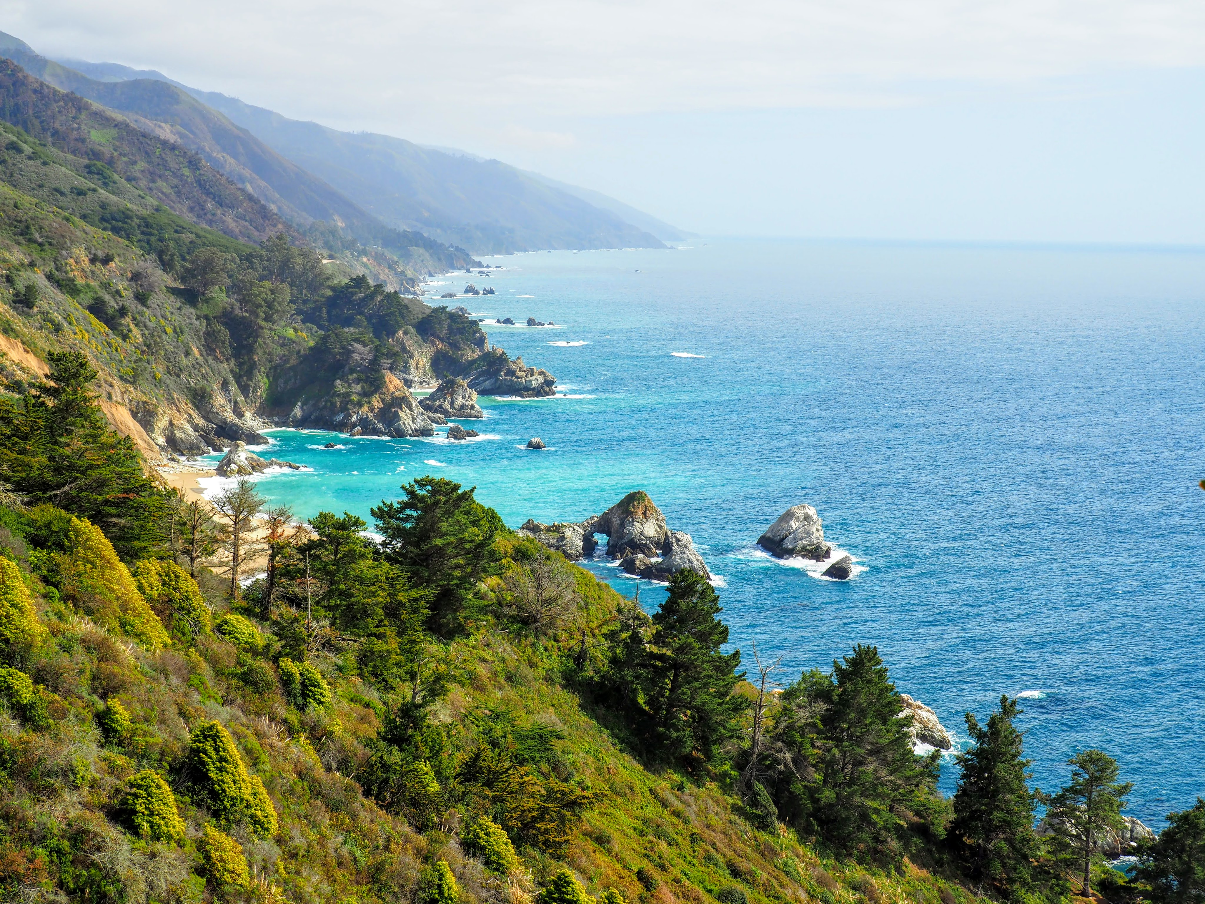 A Week in Pictures Near Big Sur