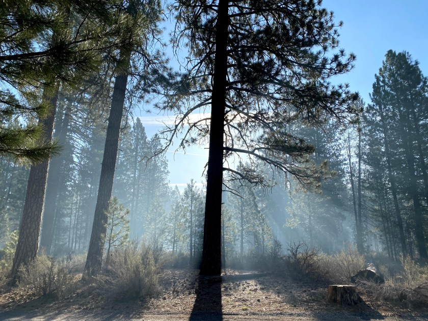 This is wildfire smoke, not fog