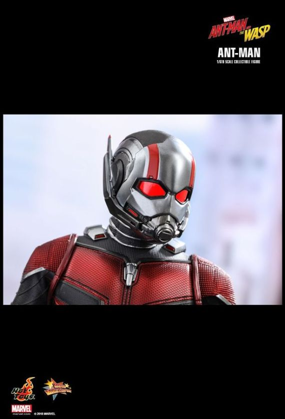 HOTMMS497–Ant-Man-2-Ant-Man-1-6-FigureD
