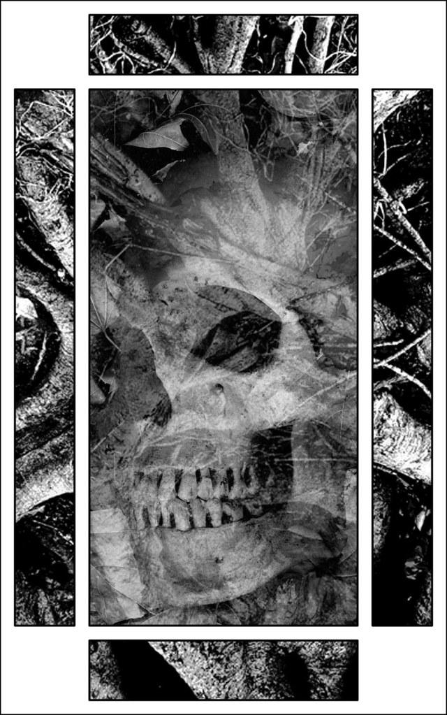 Haverhill House Publishing — Strange Seed by T.M. Wright (Interior Illustration #3)