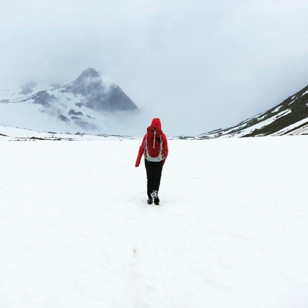 Fint med sommer i Jotunheimen, men neste år tar jeg med sol og ski. Takk for en fin tur @sigmoen.