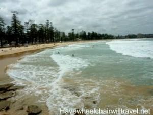 Manly Beach & Shelley Beach
