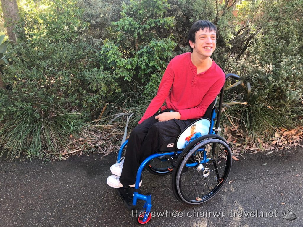 Mogo wheelchair - Have Wheelchair Will Travel