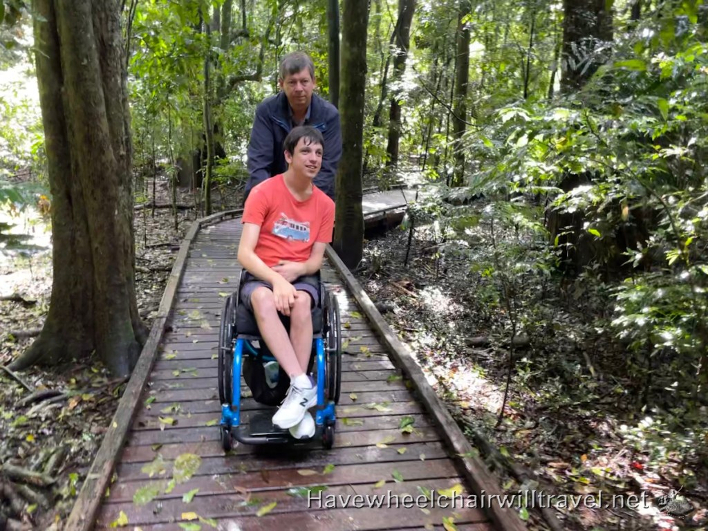 Victoria Park Nature Reserve - wheelchair accessible Byron Bay and surrounds - Have Wheelchair Will Travel