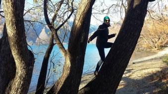 E in a tree