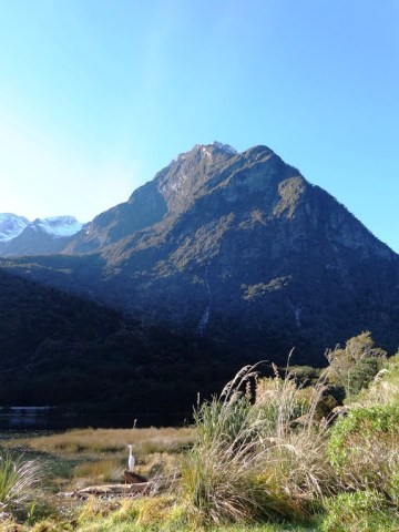 milford-sound-mountain-and-crane