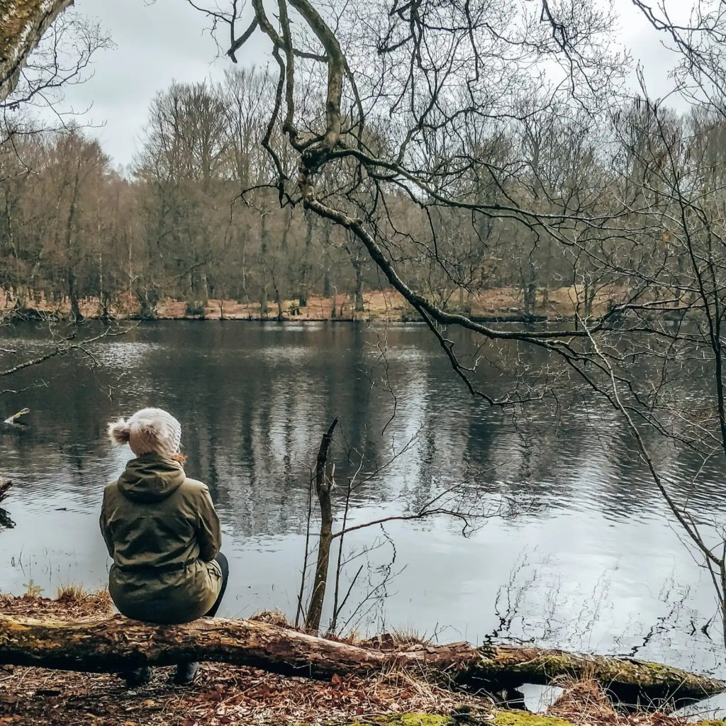 A women sits on a log facing a small lake surrounded by trees.