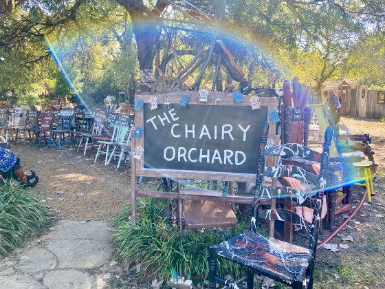 The Chairy Orchard in Denton