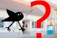 Bude muset Havránek opustit své hnízdo?
