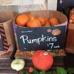 ホールフーズでもハロウィン用のかぼちゃがでてきました。ジャック・オー・ランタンを作るのは意外と簡単だからやってみては?