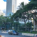 トランプ大統領ハワイ11月3日。現地ワイキキの最新情報です。コンクリートのブロック。9AM(No.1)