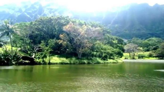 Fischen in Hawaii auf Oahu: Ideal fuer Familien