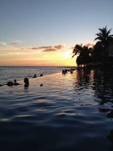 Sommer Hawaii