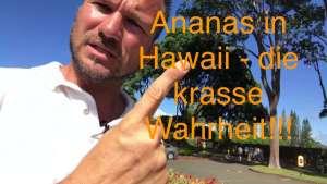 Dole Ananas Plantage hawaii